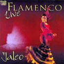 Flamenco [Live] thumbnail