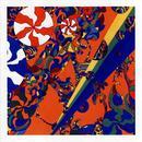 Orchestrated Kaleidoscopes thumbnail