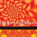 Trip Tracks: Music For The Journey thumbnail