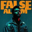 False Alarm (Single) thumbnail
