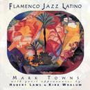 Flamenco Jazz Latino thumbnail