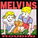 Houdini thumbnail