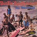 Bustin' Surfboards thumbnail