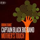 Mother's Touch thumbnail