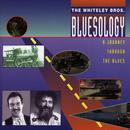 Bluesology thumbnail