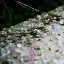 Petals On The Path thumbnail