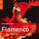 Rough Guide To Flamenco (Second Edition) thumbnail