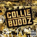 Collie Buddz thumbnail