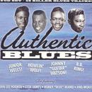 Authentic Blues thumbnail