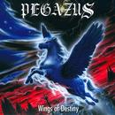 Wings Of Destiny thumbnail