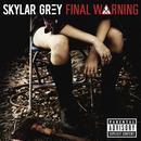 Final Warning (Single) thumbnail