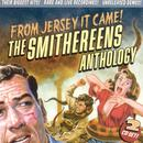 From Jersey It Came!  The Smithereens Anthology thumbnail