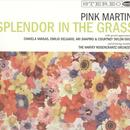 Splendor In The Grass thumbnail